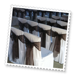 Essex Wedding chair covers